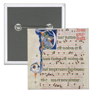 Ms 561 Page with historiated initial 'P' depicting Pins