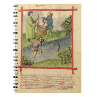 Ms Lat 9333 f.82 Fishing for Eels, from 'Tacuinum Notebook
