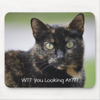 Ms. Sweetpea the Tortie Mouse Mat