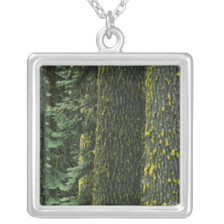 Mt. Ashland, Rogue RIver National Forest, Silver Plated Necklace