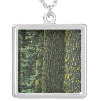 Mt. Ashland, Rogue RIver National Forest, Square Pendant Necklace
