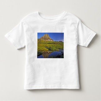 Mt Clements reflects into small pool at Logan Toddler T-Shirt