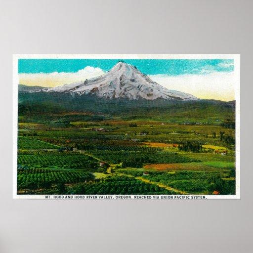 Mt. Hood from Hood River ValleyHood River, OR Print