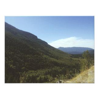 Mt. Hood Highway Photo Art