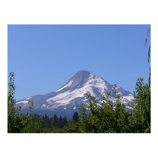 Mt Hood, Oregon on an August day postcard