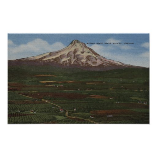 Mt. Hood, Oregon - View of Mountain from Hood Posters