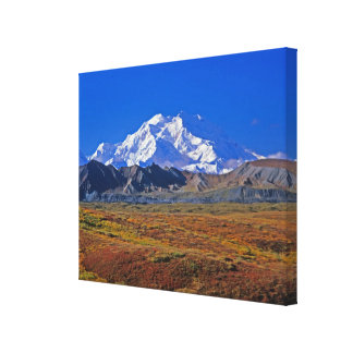 Mt . McKinley Denali National Park , Alaska. Canvas Print