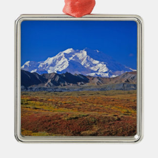 Mt . McKinley Denali National Park , Alaska. Silver-Colored Square Decoration