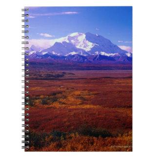 Mt. McKinley Notebook