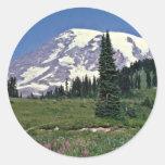 Mt. Rainer, Washington Red flowers Sticker