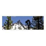 Mt. Washington Bookmark Business Cards