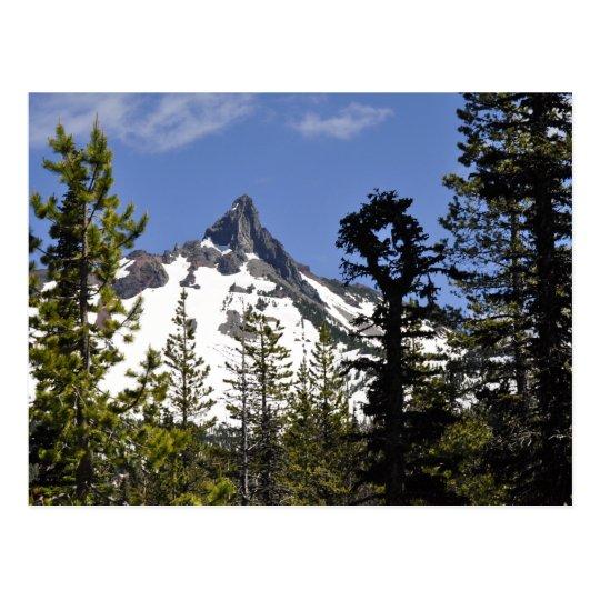 Mt. Washington Postcard