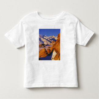 Mt. Whitney and Lone Pine peak Toddler T-Shirt