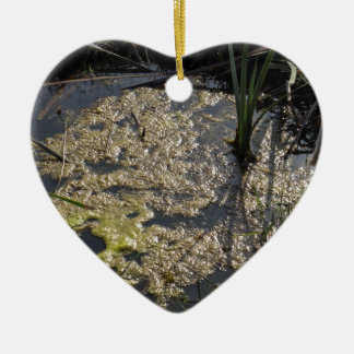Muck and algae in stagnant water ceramic heart decoration
