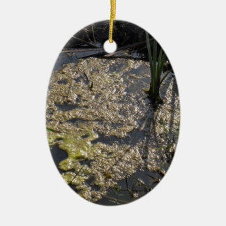 Muck and algae in stagnant water ceramic oval decoration