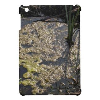 Muck and algae in stagnant water iPad mini case