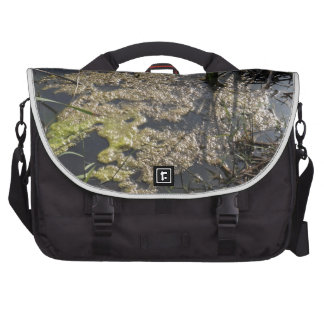 Muck and algae in stagnant water laptop commuter bag