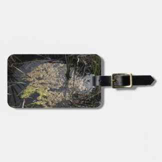 Muck and algae in stagnant water tag for luggage