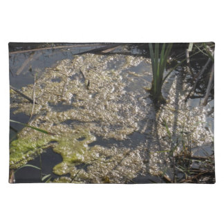 Muck and algae in stagnant water place mat