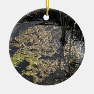 Muck and algae in stagnant water round ceramic decoration
