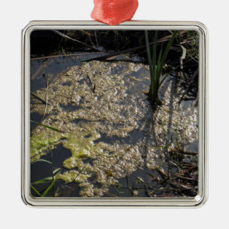 Muck and algae in stagnant water Silver-Colored square decoration