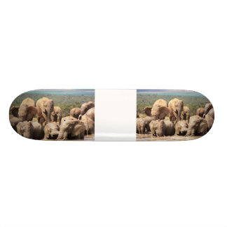 Muddy Elephants Skate Boards