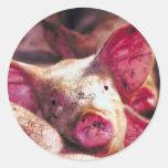 Muddy Piglet Classic Round Sticker