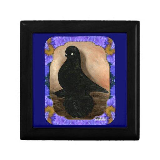 Muffed Tumbler Pigeon Framed Trinket Boxes