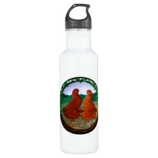 Muffed Tumbler Pigeons2 710 Ml Water Bottle