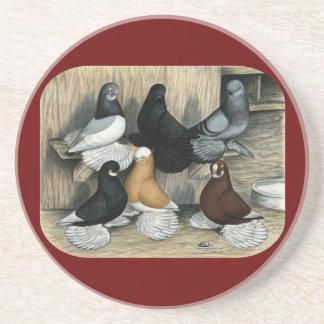 Muffed Tumbler Pigeons Beverage Coasters