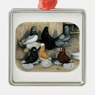 Muffed Tumbler Pigeons Silver-Colored Square Decoration