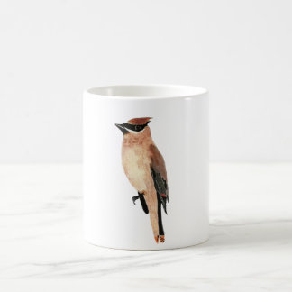 Mug Cedar Waxwing