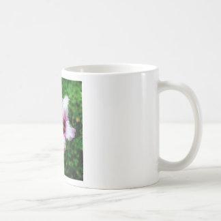 Mug/Cup Hibiscus Coffee Mug