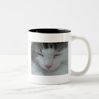 Mug - Maine Coon Cat Image 2