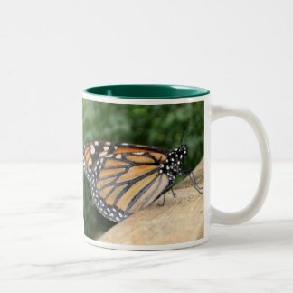 Mug - Monarch Butterfly