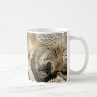 Mug Sleeping Kangaroo