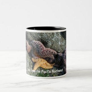 Mug:  Starfish Love from PNW Two-Tone Coffee Mug