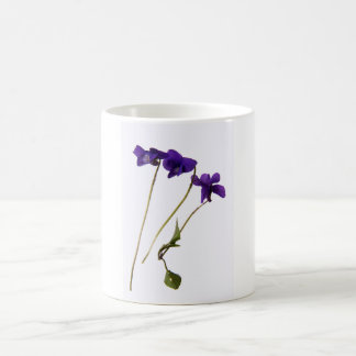 Mug Violets