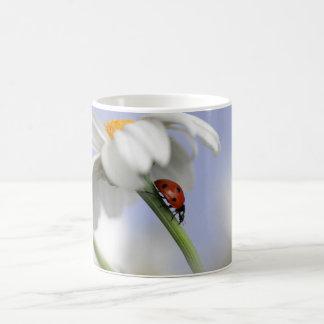 Mug with Ladybird
