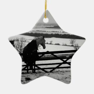 mugs, bags, towels, horse image ceramic star decoration