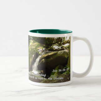 Mugs: Distilled to the Streams Two-Tone Coffee Mug
