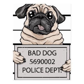 mugshot dog cartoon. postcard