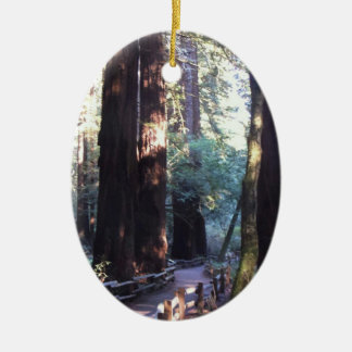 Muir Woods Christmas Ornament