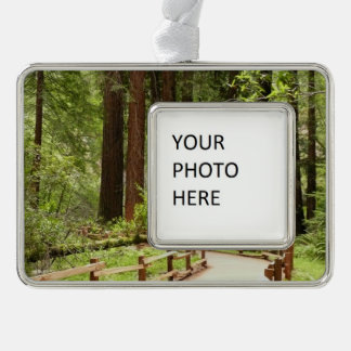 Muir Woods Path I Silver Plated Framed Ornament