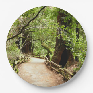 Muir Woods Path II Nature Photography Paper Plate