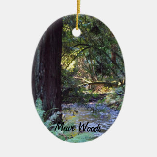 Muir Woods Stream Christmas Ornament