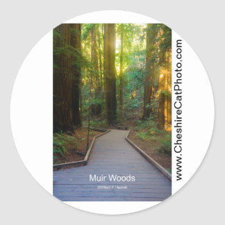 Muir Woods Walkway California Products Round Stickers