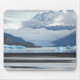 Muismat Antarctica
