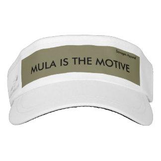 Mula is the motive Visor