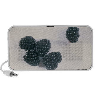 Mulberries For use in USA only.) Laptop Speakers